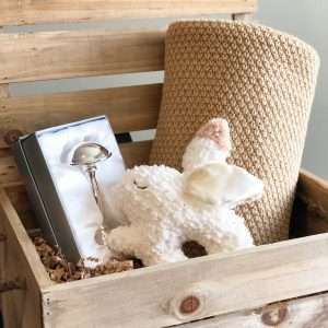 Brown Bunny Baby Gift Crate