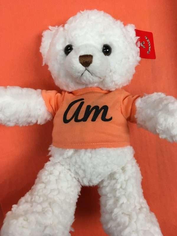 Amandine teddy bear with orange tshirt and logo